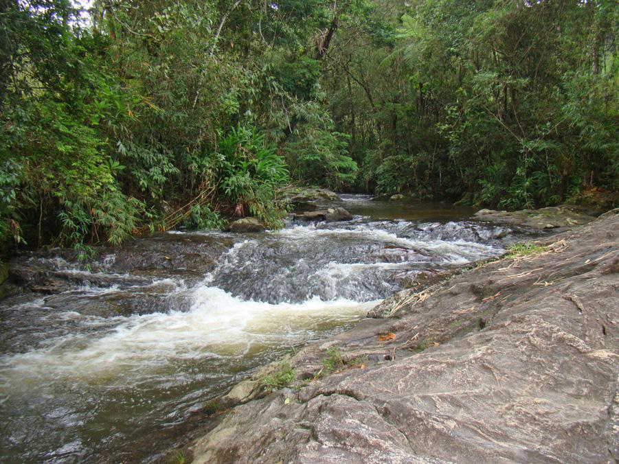 Circuito das Cachoeiras - Cachoeira Águas Claras - Visconde de Mauá