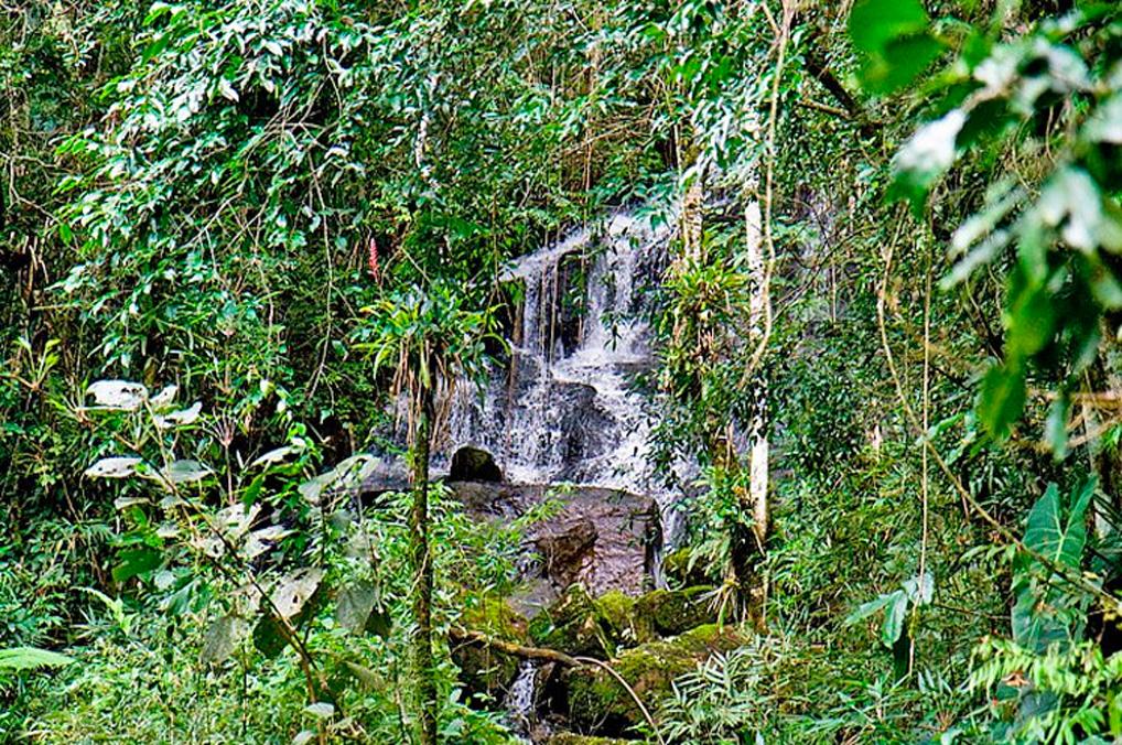 Circuito das Cachoeiras - Cachoeira do Araçá - Visconde de Mauá