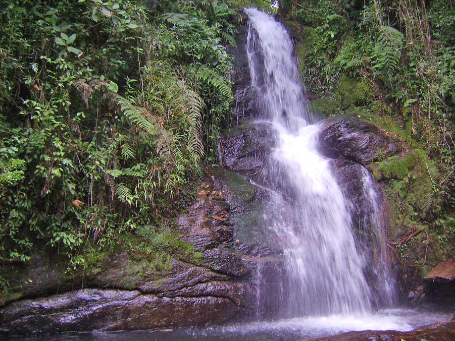 Pontos Turísticos - Cachoeira dos Macacos - Visconde de Mauá