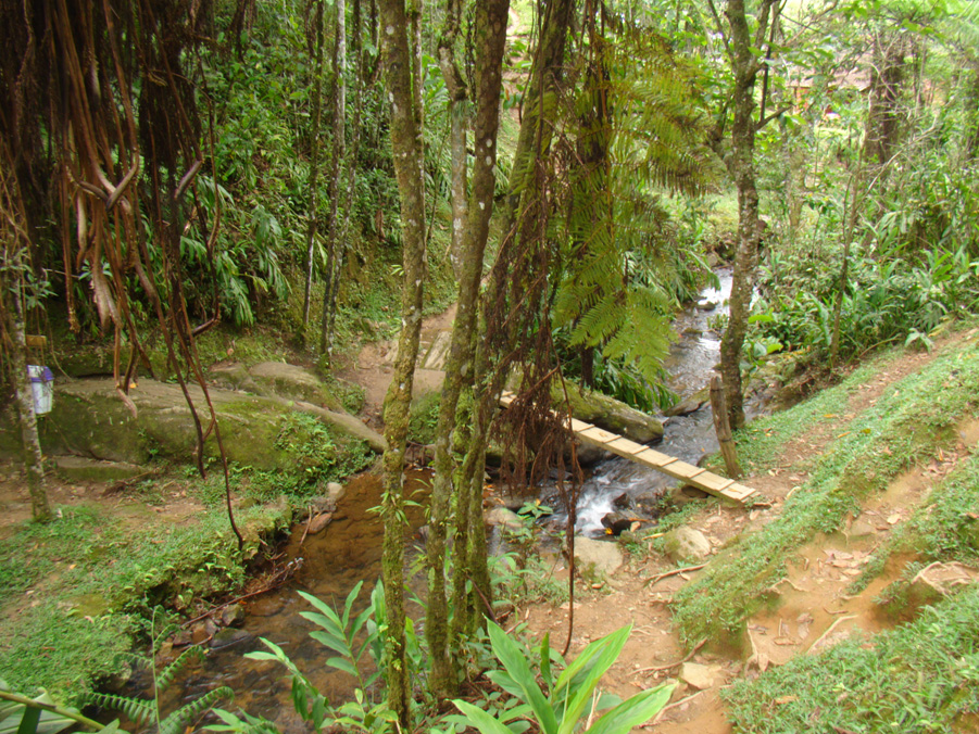 Pontos Turísticos - Cachoeira Véu da Noiva - Visconde de Mauá