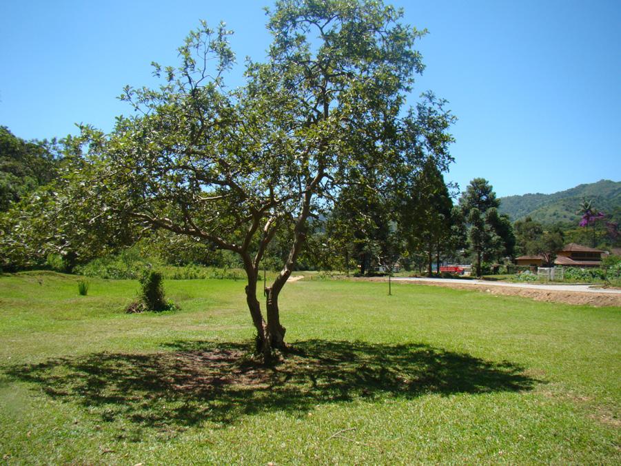 Pontos Turísticos - Prainha - Visconde de Mauá