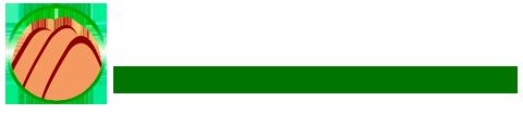 Portal Visconde de Mauá.COM